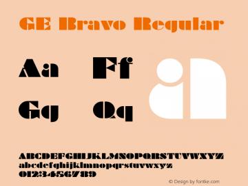 GE Bravo