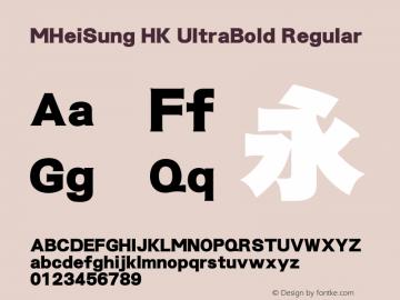 MHeiSung HK UltraBold