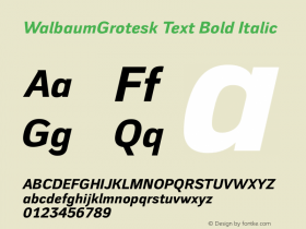 WalbaumGrotesk Text
