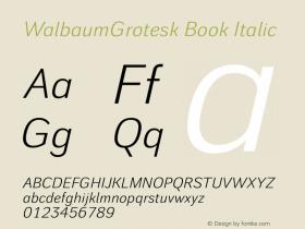 WalbaumGrotesk Book