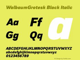 WalbaumGrotesk Black