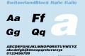 SwitzerlandBlack Italic