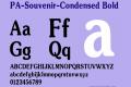 PA-Souvenir-Condensed