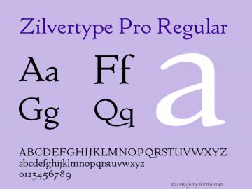 Zilvertype Pro
