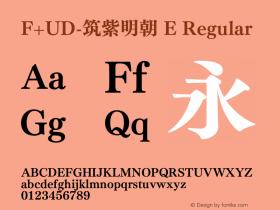 F+UD-筑紫明朝 E