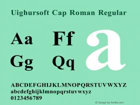 Uighursoft Cap Roman