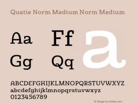 Quatie Norm Medium