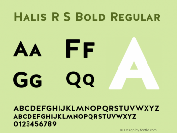 Halis R S Bold