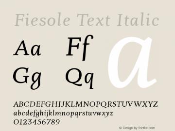 Fiesole Text