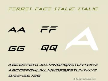Ferret Face Italic