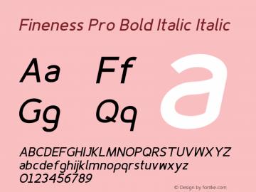 Fineness Pro Bold Italic