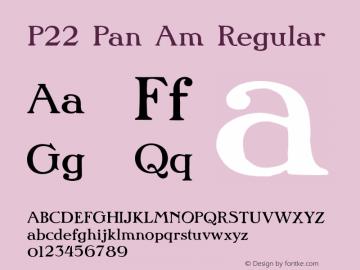 P22 Pan Am