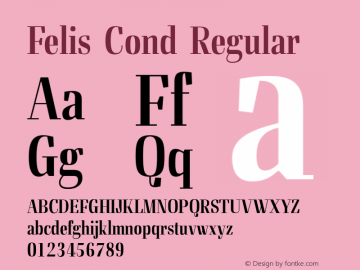 Felis Cond
