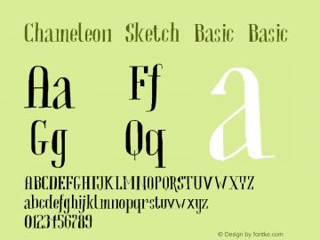 Chameleon Sketch Basic