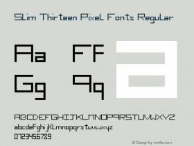 Slim Thirteen Pixel Fonts