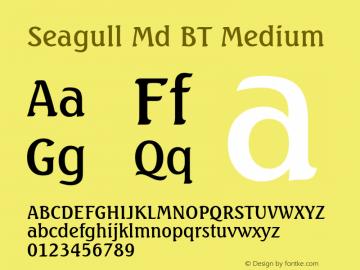 Seagull Md BT