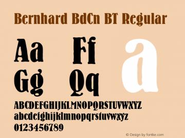 Bernhard BdCn BT