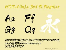 HOT-Ninja Std R