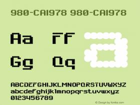 980-CAI978