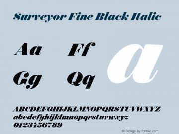 Surveyor Fine Black
