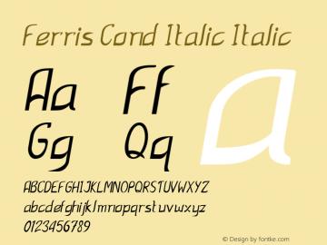 Ferris Cond Italic