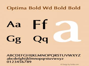 Optima Bold Wd Bold