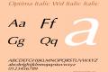 Optima Italic Wd Italic