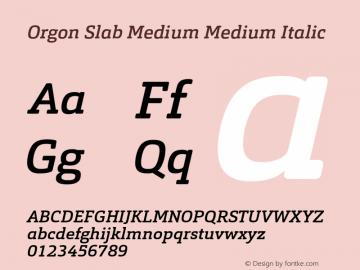 Orgon Slab Medium
