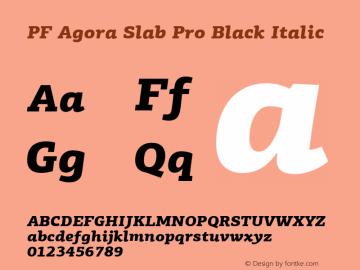 PF Agora Slab Pro Black