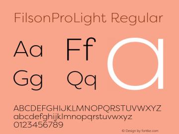 FilsonProLight