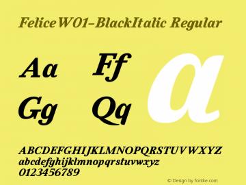 Felice-BlackItalic