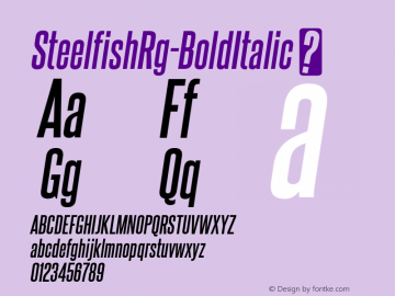 SteelfishRg-BoldItalic