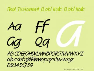 Final Testament Bold Italic