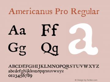 Americanus Pro
