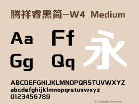 腾祥睿黑简-W4