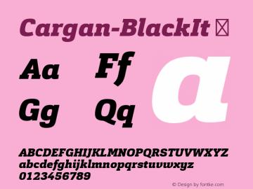 Cargan-BlackIt