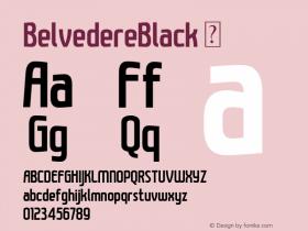 BelvedereBlack