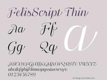 FelisScript