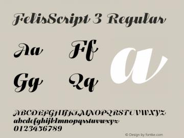 FelisScript 3