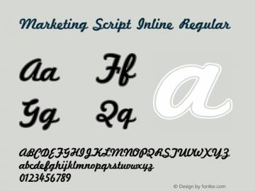 Marketing Script Inline