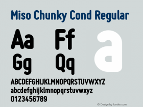 Miso Chunky Cond