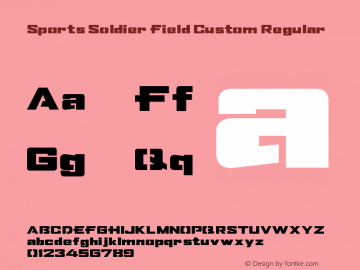 Sports Soldier Field Custom