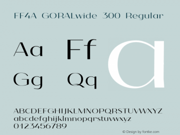 FF4A GORALwide 300