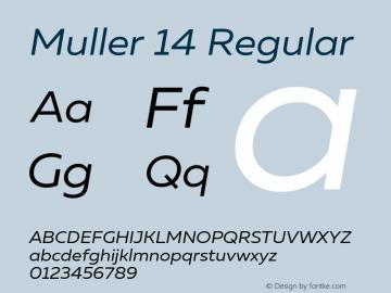 Muller 14