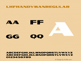 LHFHandymanRegular