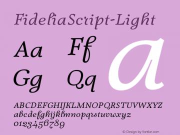 FideliaScript-Light