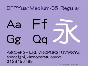 DFPYuanMedium-B5