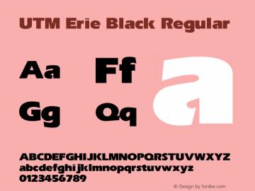 UTM Erie Black
