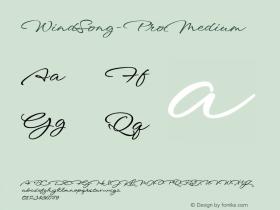 WindSong-ProMedium