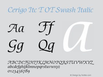 Cerigo Itc T OT Swash